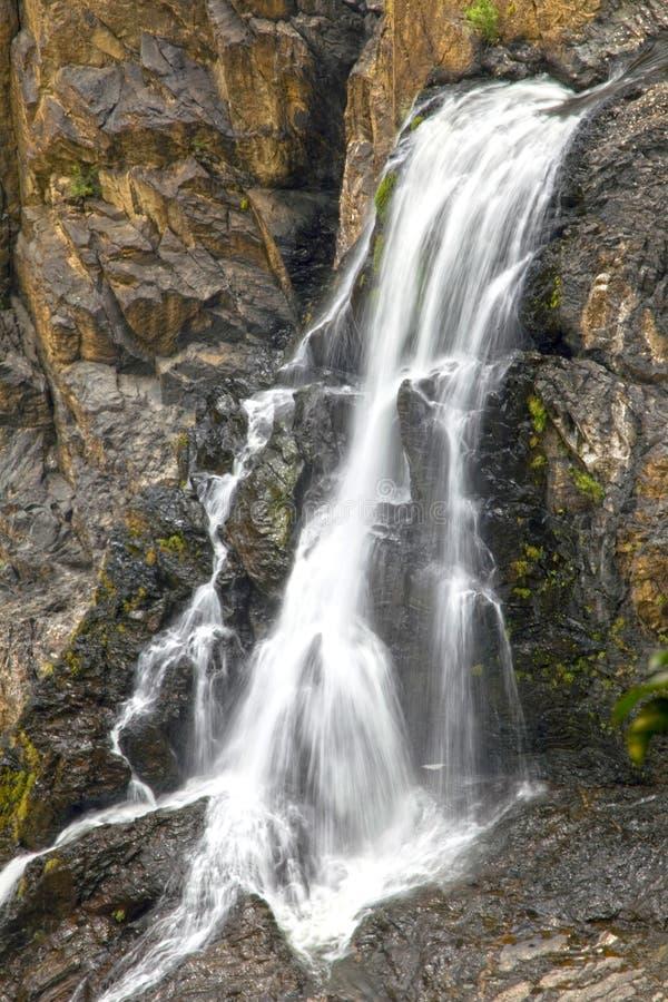 Cascada en la selva tropical, mojones, Australia de Barron Falls foto de archivo libre de regalías