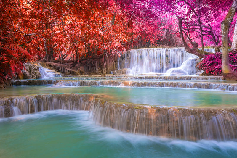 Cascada en la selva tropical (Tat Kuang Si Waterfalls fotos de archivo