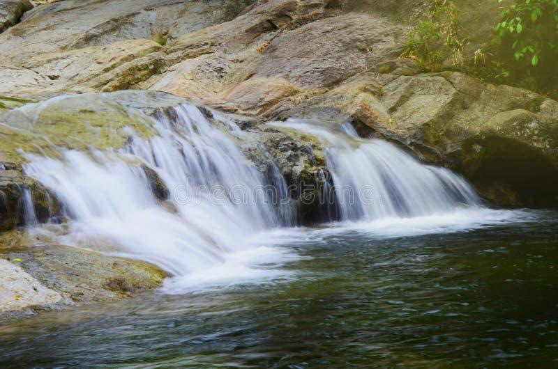 Cascada en las rocas en el bosque imagen de archivo