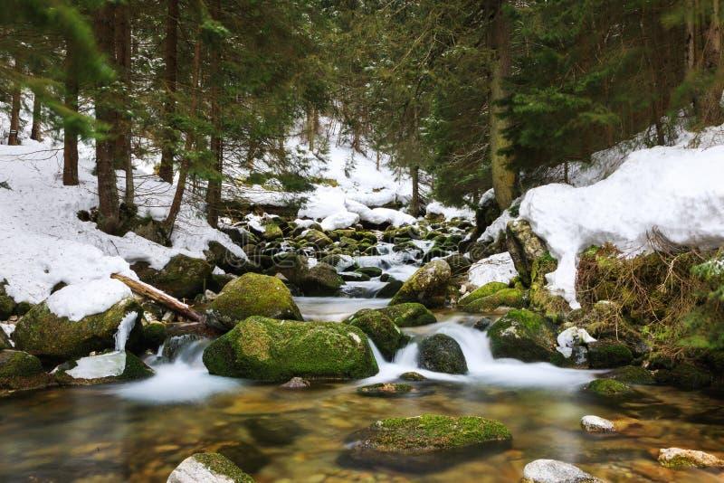 Cascada en montañas de un invierno imagen de archivo