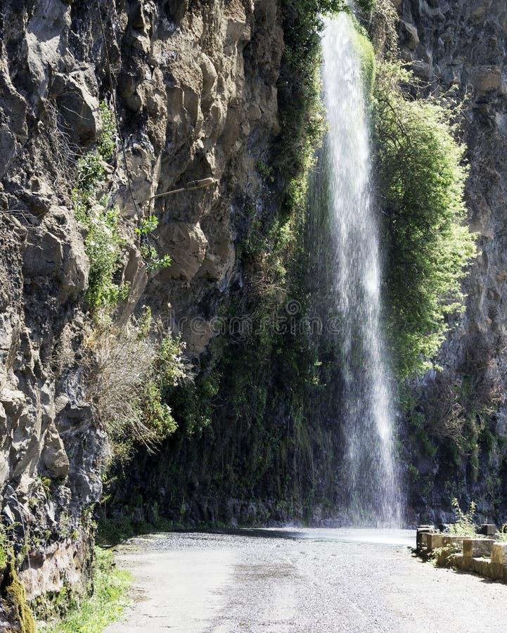 Cascada en naturaleza en el camino de Madeira cerca del calheta foto de archivo