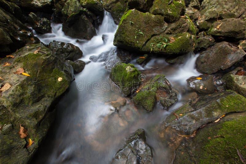 Cascada en naturaleza en la estación de lluvias en las zonas tropicales fotos de archivo