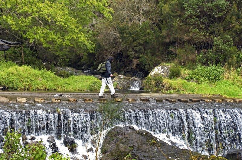 Cascada en paisaje de la montaña, isla Madeira foto de archivo libre de regalías