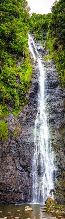 Cascada en selva fotografía de archivo libre de regalías