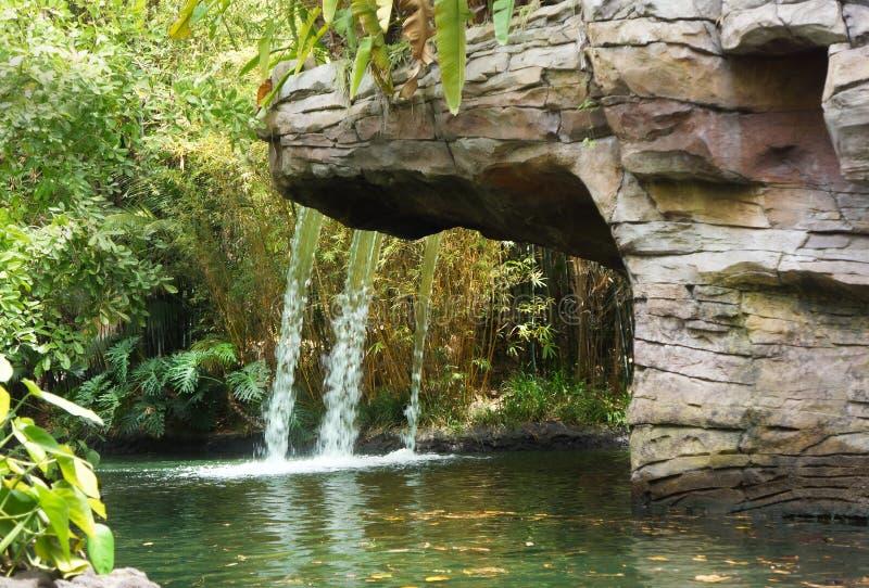 Cascada en selva en la travesía de la selva de Disney imágenes de archivo libres de regalías