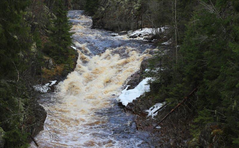 Cascada en Suecia foto de archivo libre de regalías