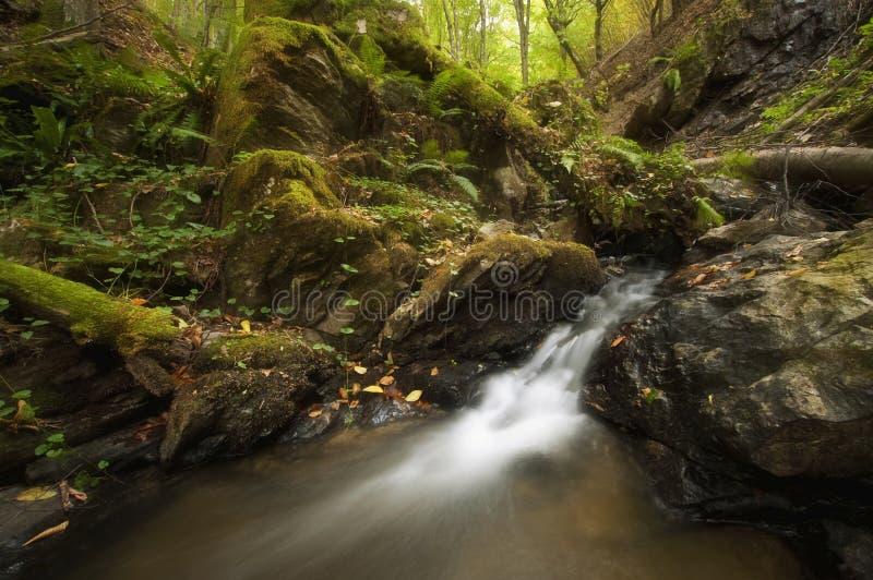 Cascada en un río hermoso de la montaña imágenes de archivo libres de regalías