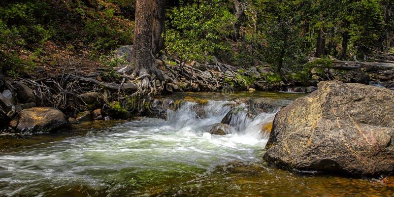 Cascada en una cala con los árboles y las rocas III fotos de archivo libres de regalías
