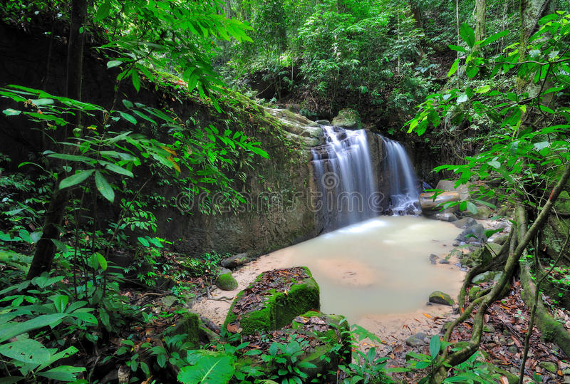 Cascada en una selva de Borneo fotos de archivo