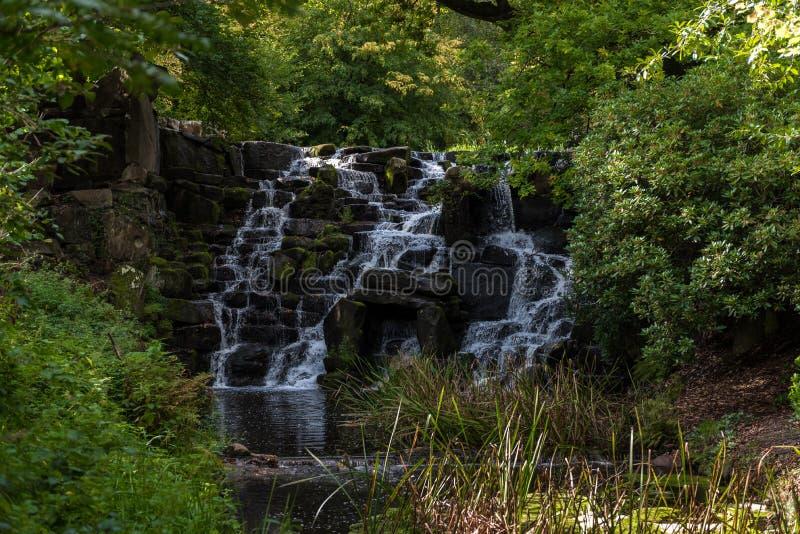 Cascada en Windsor Great Park en Inglaterra fotografía de archivo libre de regalías