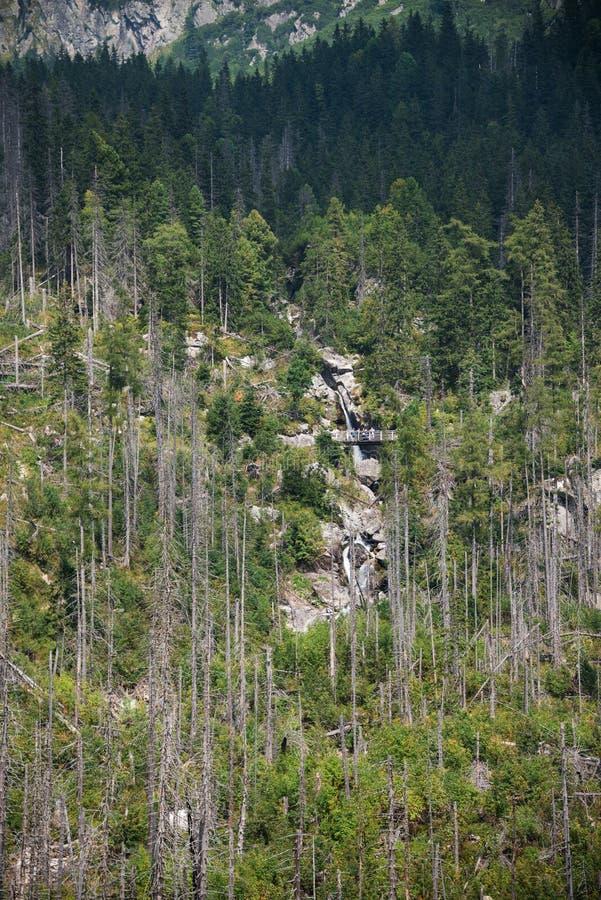 Cascada gigante en las altas montañas de Tatra fotos de archivo
