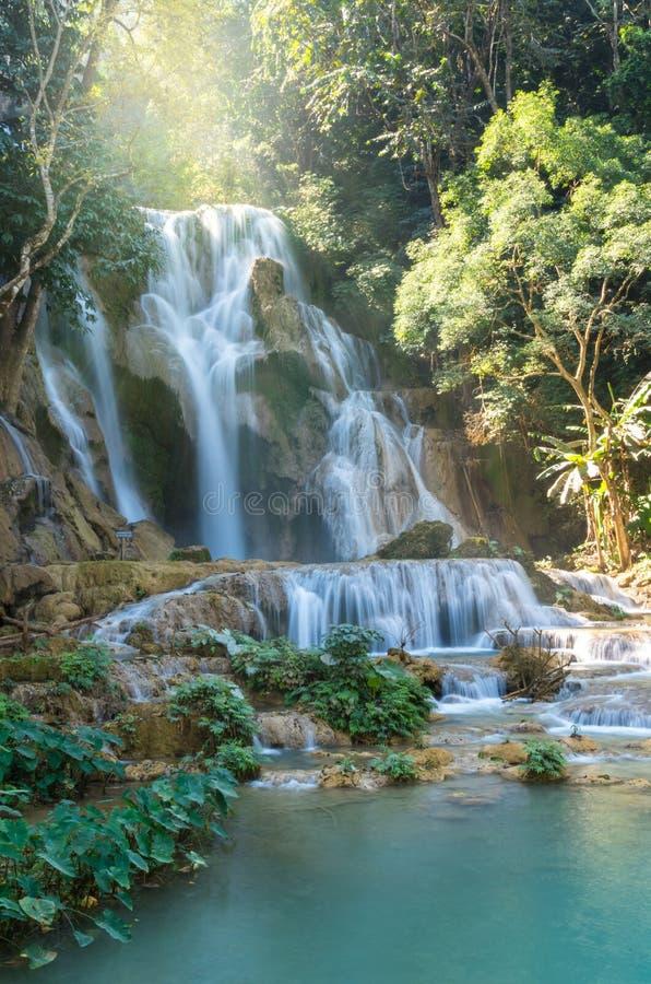 Cascada hermosa con el foco suave en el bosque fotos de archivo