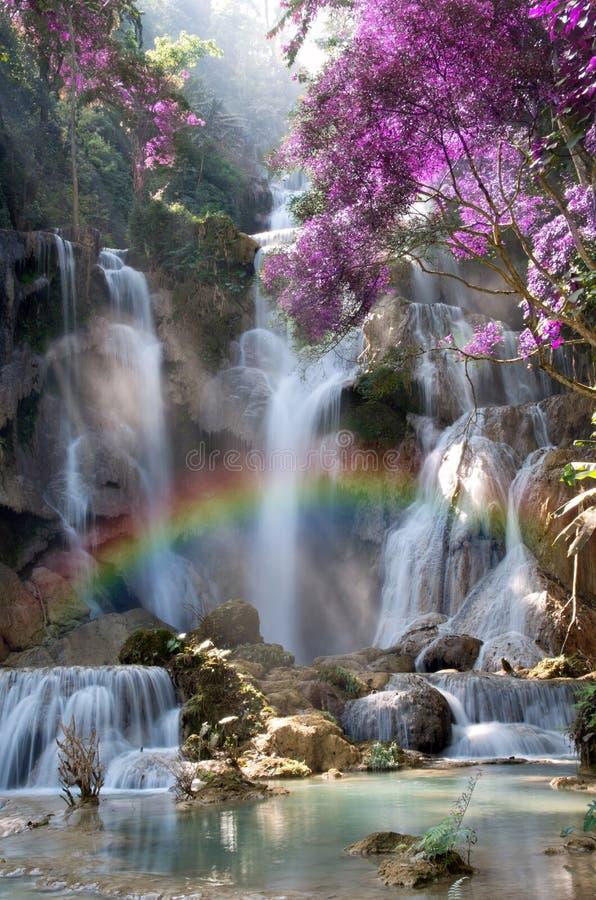 Cascada hermosa con el foco suave y arco iris en el bosque imagen de archivo
