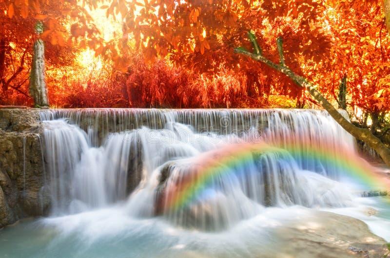 Cascada hermosa con el foco suave y arco iris en el bosque fotos de archivo