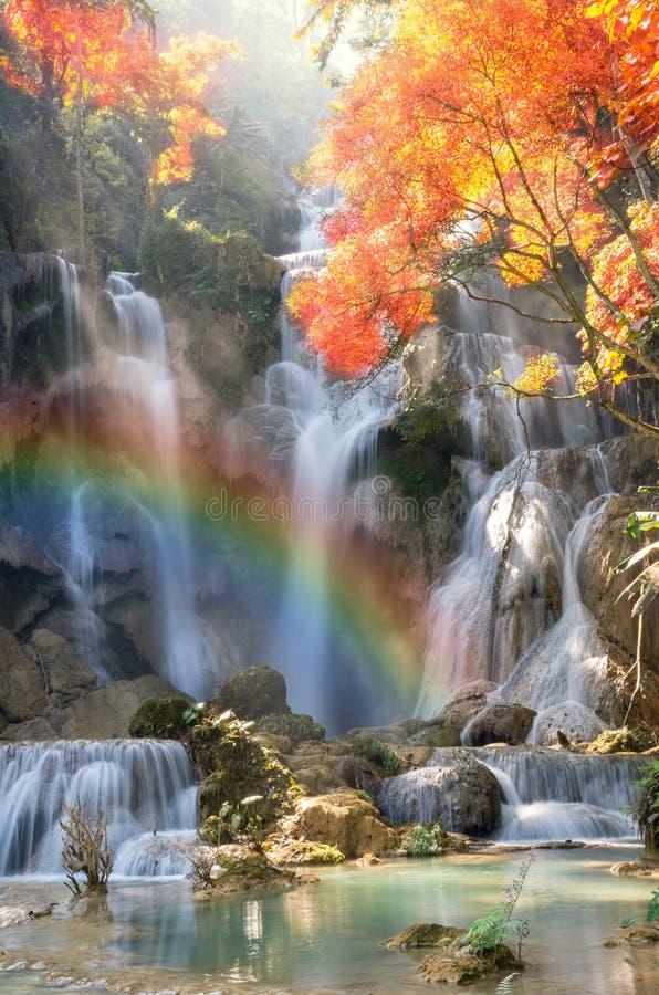 Cascada hermosa con el foco suave y arco iris en el bosque fotos de archivo libres de regalías