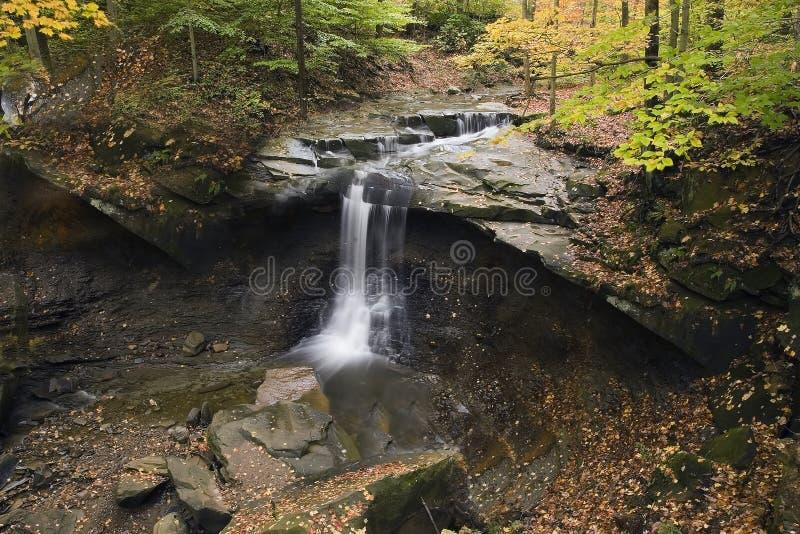 Cascada hermosa con las hojas caidas y los árboles coloridos imágenes de archivo libres de regalías