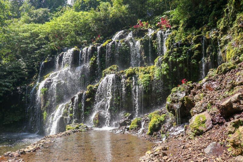 Cascada hermosa de Banyu Wana Amertha en selva tropical Cascada escénica con la roca Cascada pintoresca de la cascada en Bali fotos de archivo