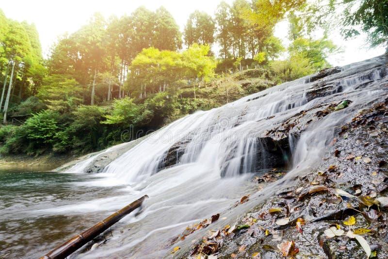 Cascada hermosa del valle del keikoku del yoro debajo del sol de la mañana en la prefectura de Chiba, Japón foto de archivo