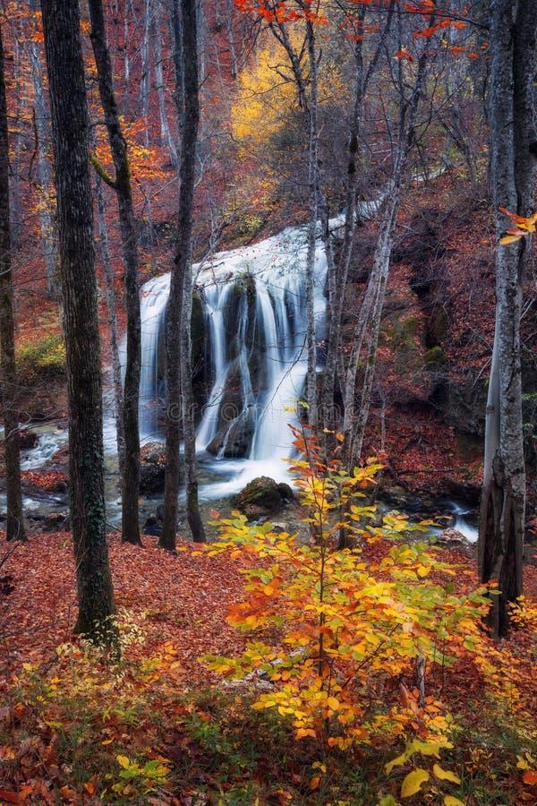 Cascada hermosa en bosque del otoño en montañas crimeas en el sol fotografía de archivo libre de regalías