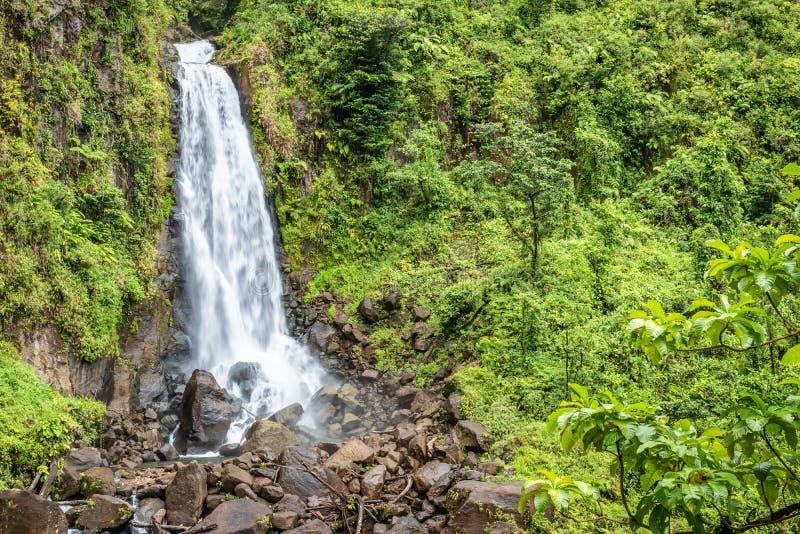 Cascada hermosa en caídas de Dominica, Trafalgar, isla caribeña fotografía de archivo libre de regalías