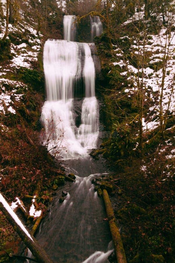 Cascada hermosa en las maderas foto de archivo