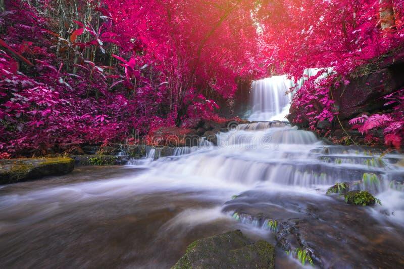 cascada hermosa en selva tropical en el phet de la montaña del berk de la tina del phu fotos de archivo libres de regalías