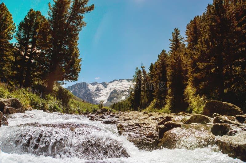 Cascada hermosa en Siberia Altai foto de archivo libre de regalías