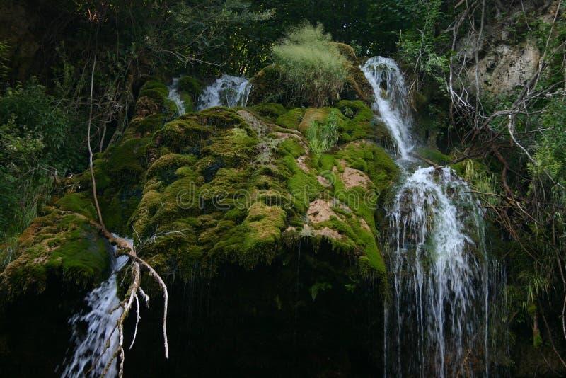 Cascada Lisine, Serbia fotos de archivo