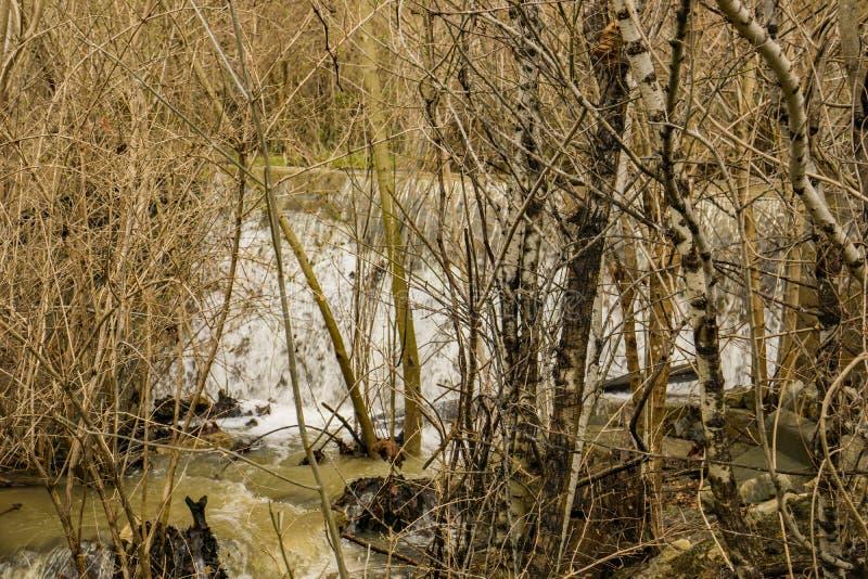 Cascada ocultada en Mason Creek fotos de archivo libres de regalías