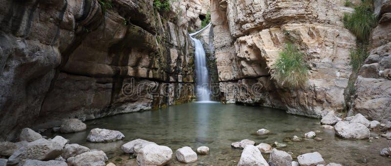 Cascada ocultada en Wadi Arugot, Israel fotografía de archivo