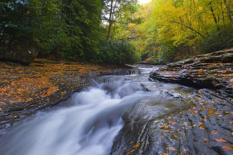 Cascada pacífica en el bosque de Pennsylvania foto de archivo