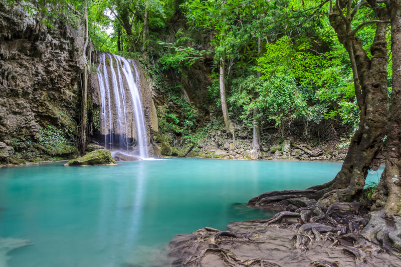 Cascada profunda hermosa del bosque fotografía de archivo libre de regalías