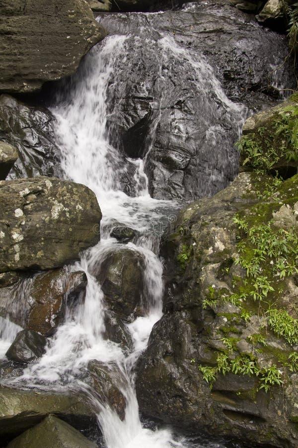 Cascada Puerto Rico fotos de archivo libres de regalías