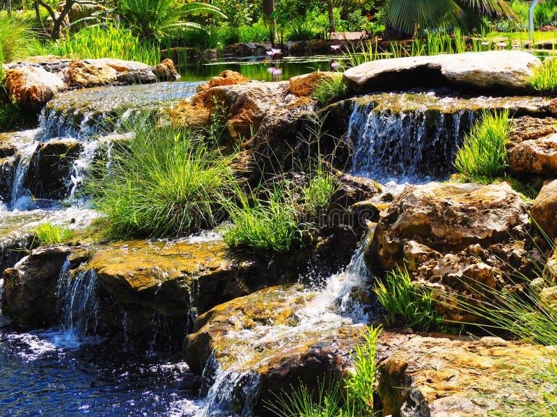Cascada rocosa exótica en México imagen de archivo