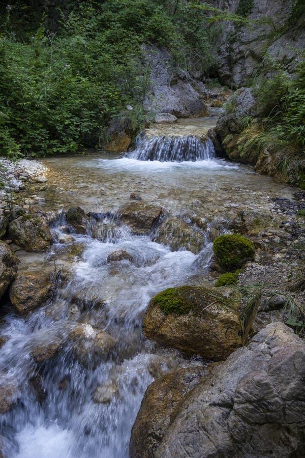 Cascada rodeada de naturaleza fotos de archivo
