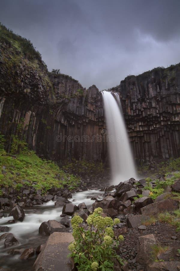 Cascada Skaftafell de Svartifoss imágenes de archivo libres de regalías