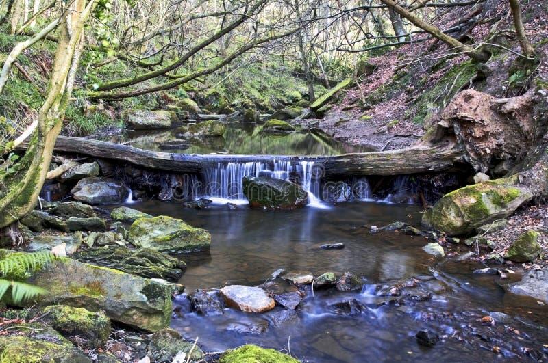Cascada sobre el árbol caido, mayo Beck River Foss descendente cercano imágenes de archivo libres de regalías