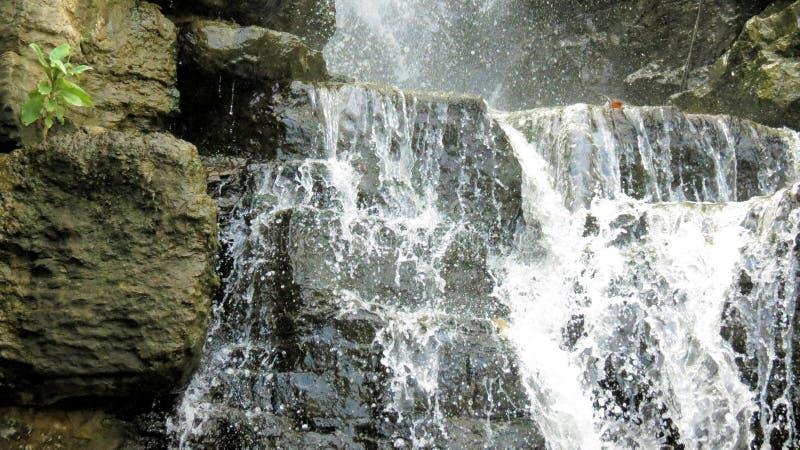Cascada sobre la piedra caliza con pequeño verdor imagenes de archivo