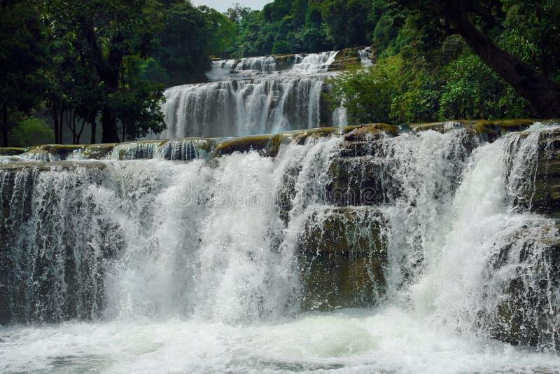 Cascada tropical. foto de archivo