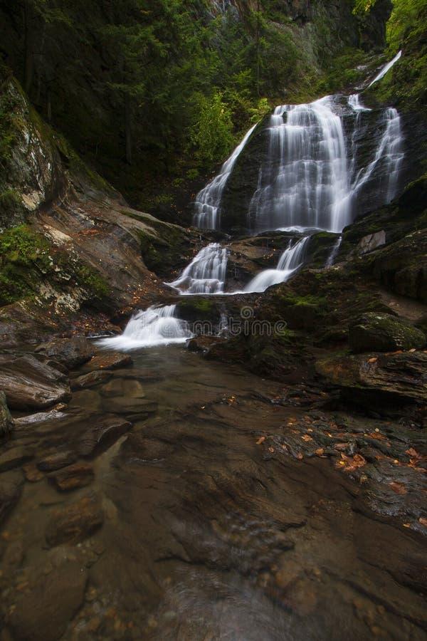 Cascada y bosque hermosos en Nueva Inglaterra, los E.E.U.U. imagen de archivo