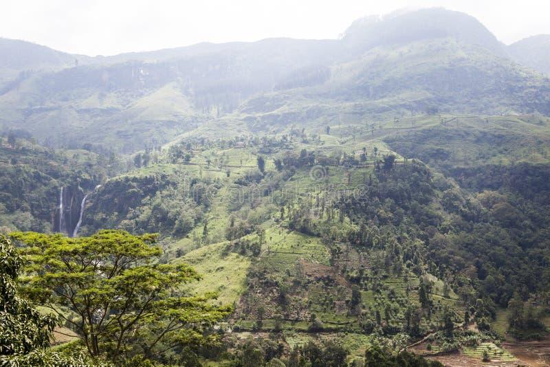 Download Cascada Y Colinas En El País De La Colina Al Lado De Nuwara Eliya En Sri Lanka Central Foto de archivo - Imagen de centro, cubo: 64213252
