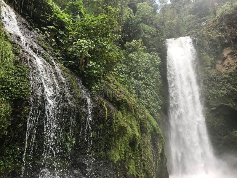 Cascadas Costa Rica, blanca Heredia del vara fotografía de archivo libre de regalías