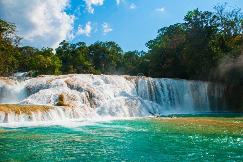 Cascadas de Agua Azul瀑布 阿瓜Azul 尤加坦 墨西哥 免版税库存照片