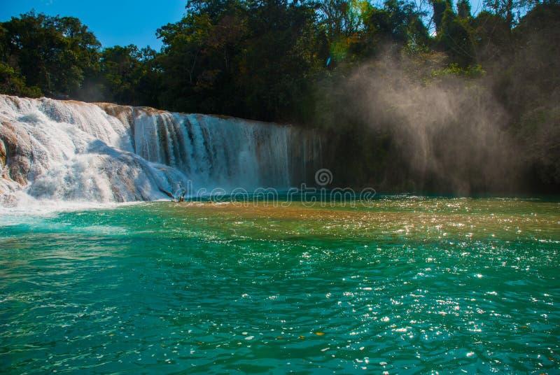 Cascadas de Agua Azul καταρράκτες Agua Azul yucatan Μεξικό στοκ φωτογραφίες