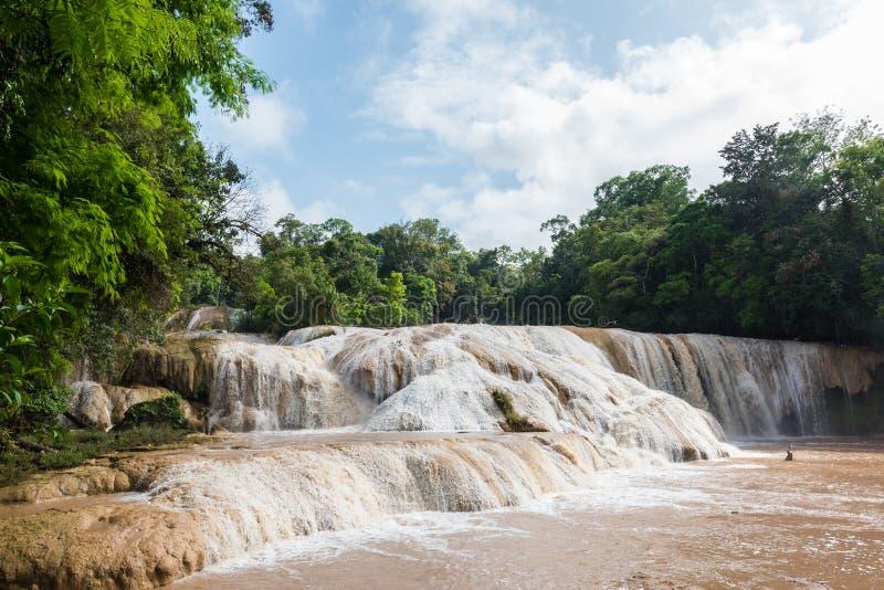 Cascadas de Agua Azul nel Chiapas, Messico fotografie stock