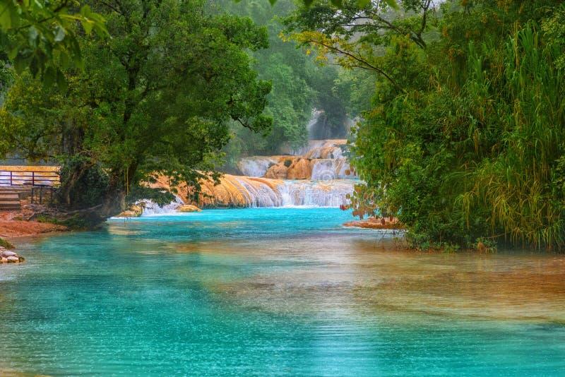 Cascadas De Agua Azul siklawy Agua Azul yucatan Meksyk obraz royalty free