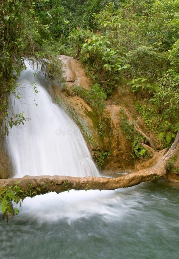 Cascadas de Agua Azul waterfall stock photography