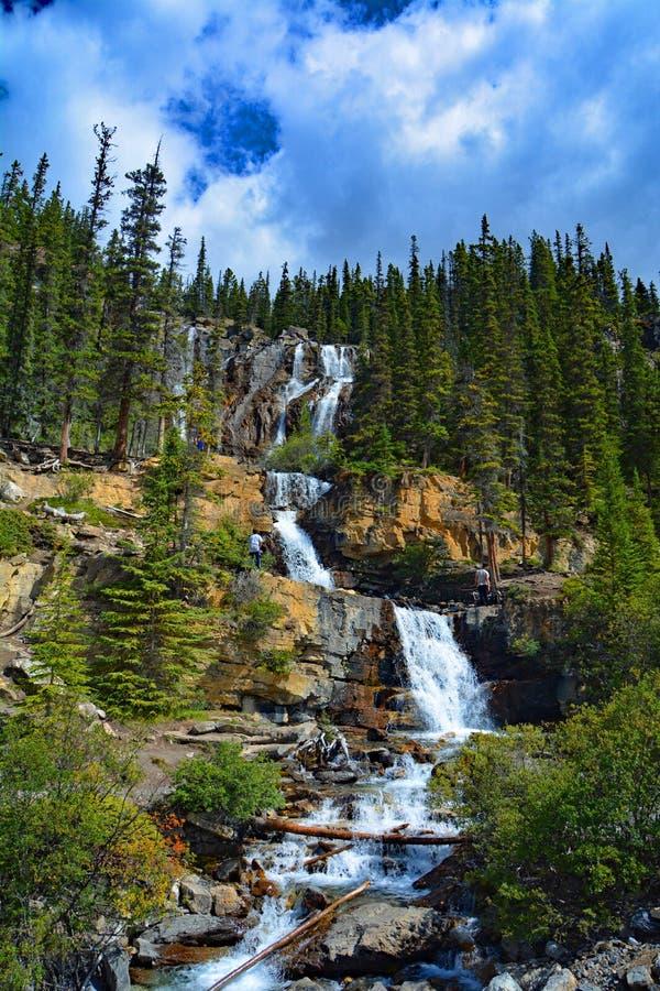 Cascadas de la cala del enredo en Jasper National Park, Alberta, Canadá fotos de archivo libres de regalías