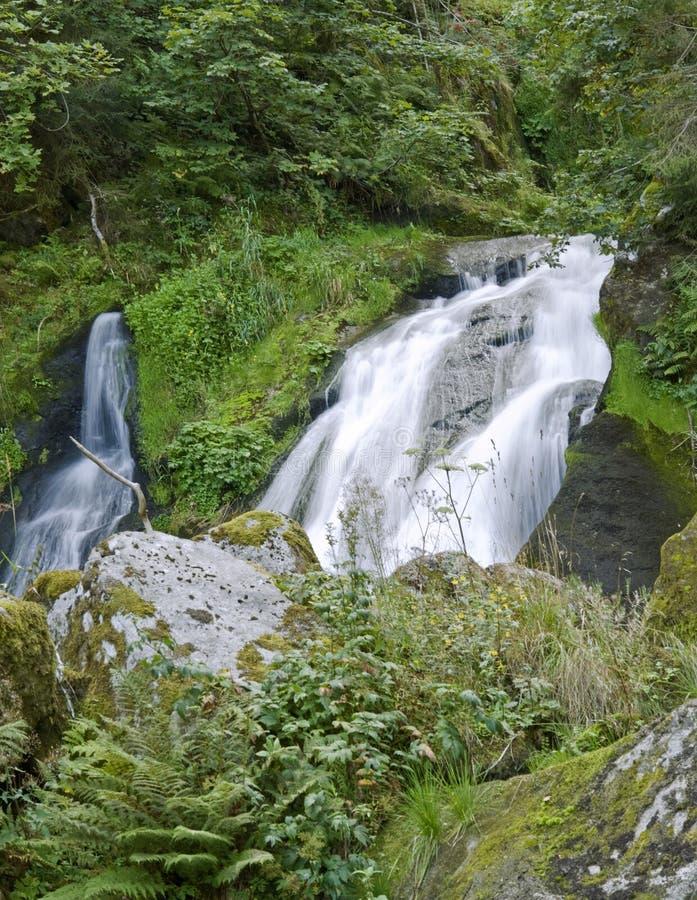 Cascadas de Triberg en la vegetación verde fotos de archivo
