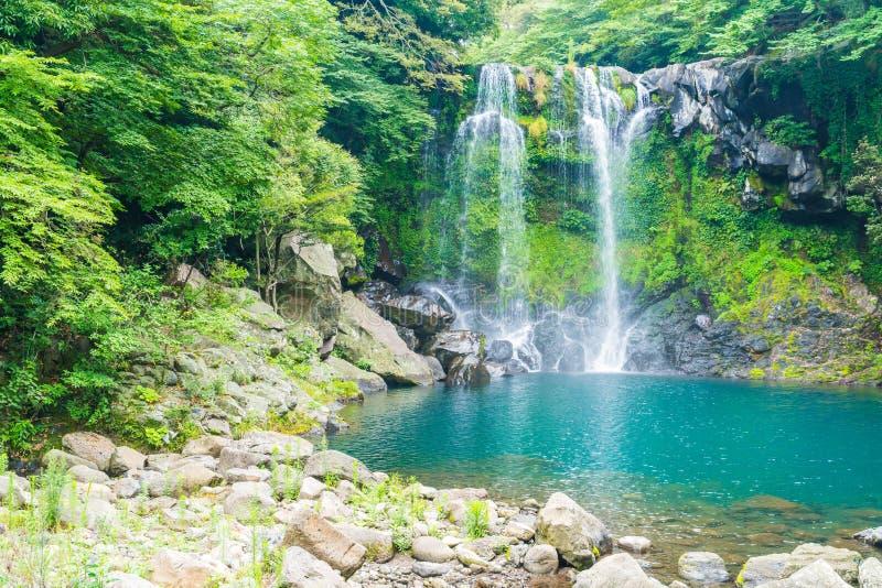 cascadas del cheonjeyeon en Jeju Isaland fotografía de archivo libre de regalías